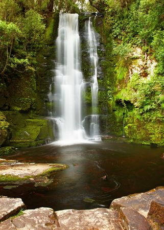 primeval forest: Waterfall in primeval forest, New Zealand