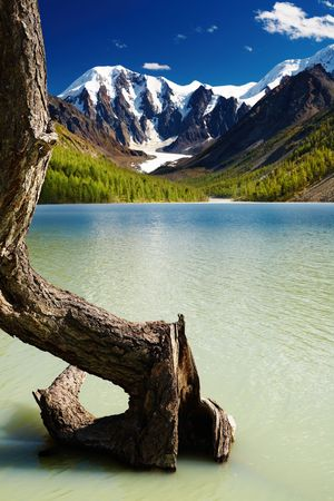Mountain landscape with lake and dead tree  photo