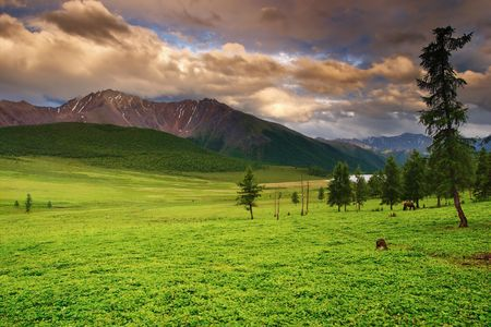 Mountain landscape with green field and cloudy sky  photo