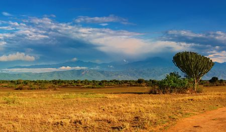 African savanna and Rwenzori Mountains, Queen Elizabeth National Park, Uganda  Stock Photo