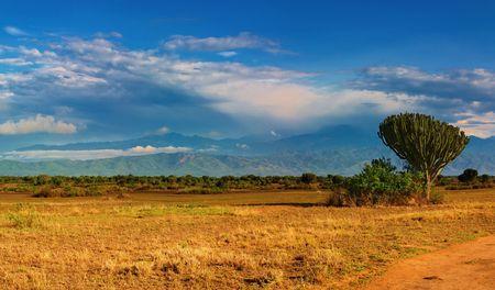 Savane africaine et des montagnes de Rwenzori, Queen Elizabeth National Park, Ouganda