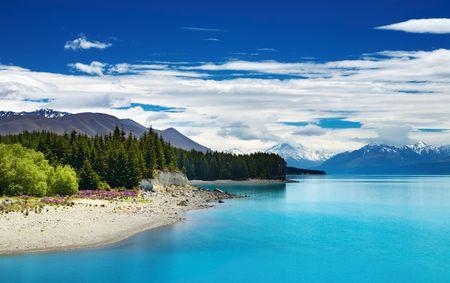 zealand: Pukaki lake and Southern Alps, New Zealand  Stock Photo