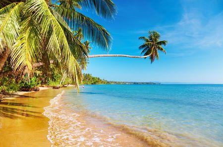 Tropical beach, Mak island, Thailand Stock Photo - 6173189