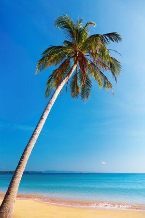 Tropical beach, Mak island, Thailand Stock Photo - 6268574