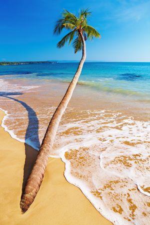 Tropical beach, Mak island, Thailand Stock Photo - 6268575
