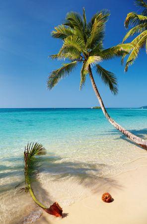 Tropical beach, Kood island, Thailand Stock Photo - 6268576