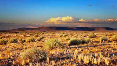 Zons ondergang in Kalahari Desert, Namibië