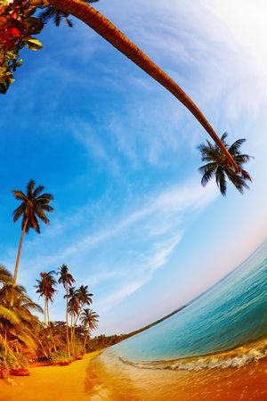 Tropical beach, Mak island, Thailand, fisheye shot