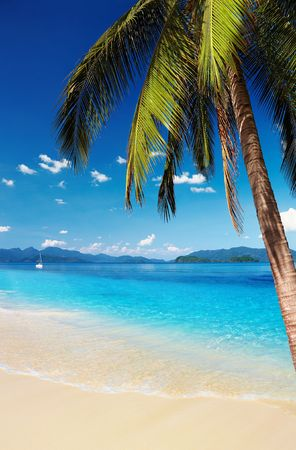 Tropical beach with palms and azure water, Thailand Stock Photo - 8280579