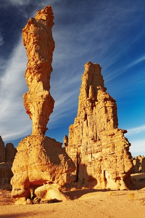 Stone forest, amazing sandstone cliffs in Sahara Desert, Tassili N'Ajjer, Algeria