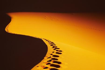 Footprints on sand dune, Sahara Desert, Algeria Stock Photo - 8624402