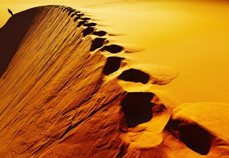 Footprints on sand dune, Sahara Desert, Algeria Фото со стока - 8624409