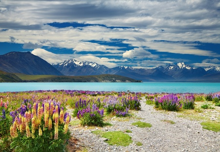 Lake Tekapo, Southern Alps, New Zealand  Фото со стока