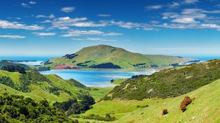 Coastal view, Pacific coast of New Zealand, Otago Peninsula Фото со стока - 13593782