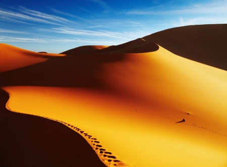 Sand dune with footprints at sunrise, Sahara Desert, Algeria