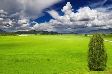 Landscape with green field and cloudy sky photo