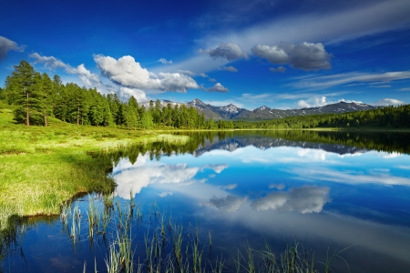 woodland scenery: Beautiful lake in Altai mountains Stock Photo
