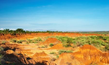 uganda: African savanna, Uganda  Stock Photo