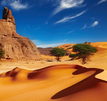 砂丘、岩、サハラ砂漠、アルジェリア