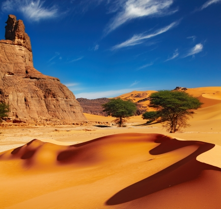 Sand dunes and rocks, Sahara Desert, Algeria 스톡 콘텐츠