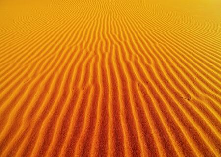 desierto del sahara: Arena de dunas en el desierto del Sahara Foto de archivo