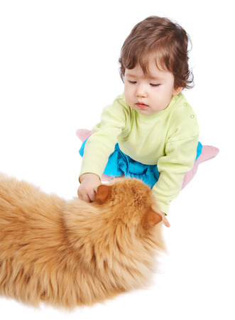 Baby and cat isolated on white photo