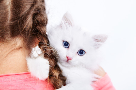 Girl hugging cute white kitty Stock Photo - 22853961