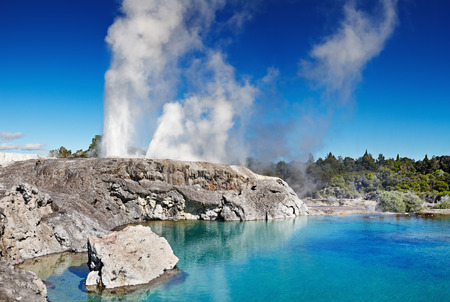 Pohutu ガイザー、ファカレワレワ地熱谷、ロトルア、ニュージーランド 写真素材