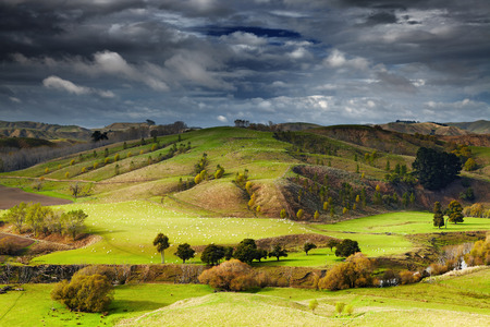 Landscape with farmland and cloudy sky, North Island, New Zealand photo
