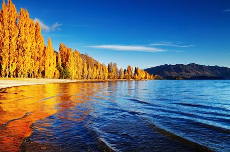 秋の風景、湖ワナカ、ニュージーランド 写真素材