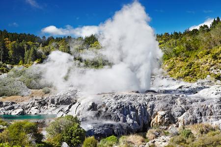 ポフツ間欠泉、ファカレワレワ地熱谷、ロトルア、ニュージーランド