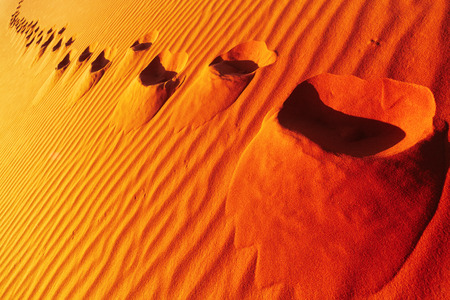 parch: Footprints on sand dune, Sahara Desert, Algeria