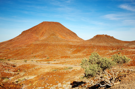parch: Kalahari Desert landscape Stock Photo