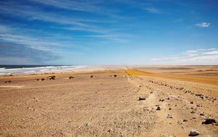 namib: Namib Desert, Skeleton Coast, Namibia