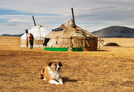 dwelling: Yurta- traditional dwelling of mongolian nomads