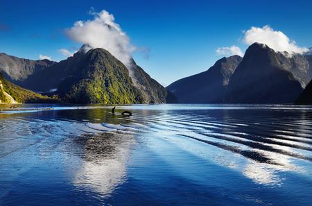 Fiord Milford Sound, South Island, Nova Zelândia Imagens