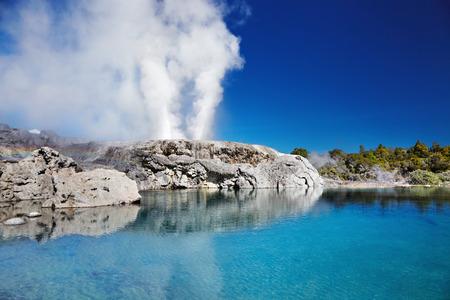 Pohutu gejzer, Whakarewarewa Thermal Valley, Rotorua, Nowa Zelandia Zdjęcie Seryjne