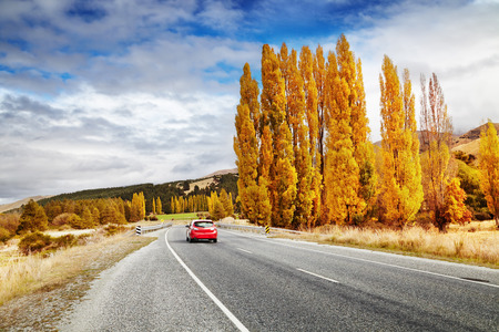 autumn road: Autumn landscape with road and red car, New Zealand Stock Photo