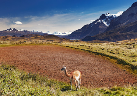 torres del paine: Torres del Paine National Park, Patagonia, Chile Stock Photo