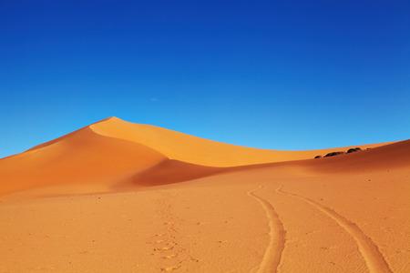 duna: duna de arena en el desierto del Sahara, Argelia Foto de archivo
