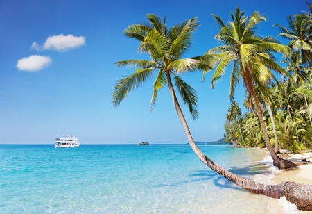 Tropical beach with palms, Kood island, Thailand