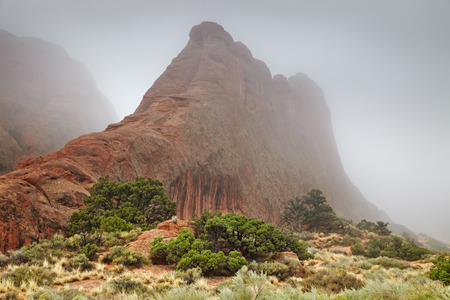 Foggy morning in the Arches National park, Utah, USA Stok Fotoğraf