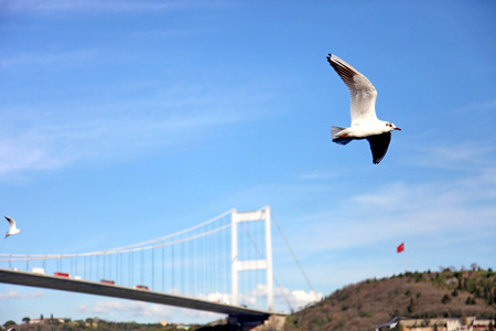 hisari: Fsm Bridge in Istanbul, Turkey