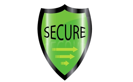 icone: Vector illustration of firewall green trust shield