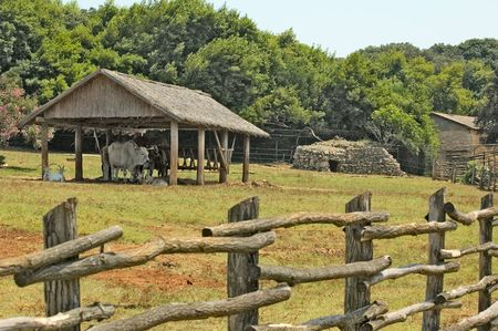 Photo of cattle paddock fence part with cow paddock, trees and several buildings at the background