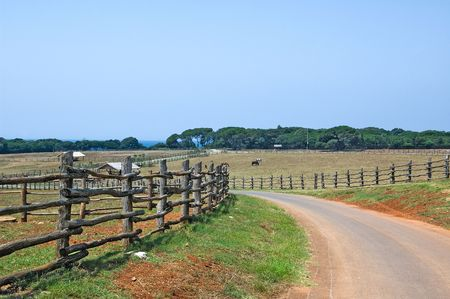 View on the rural road going to the Mediterranean sea enclosed with wooden fence photo