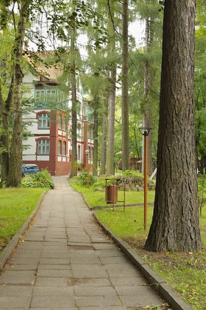 View on alley among pine trees leading to a house