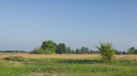 Photo of rural landscape in the morning