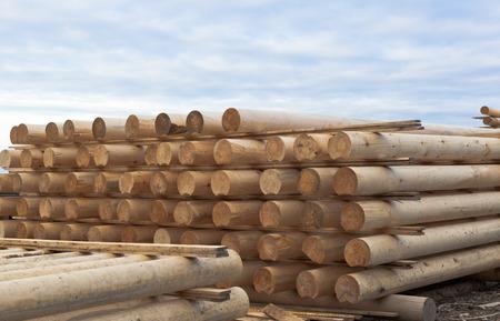 cylindrical: Tronchi cilindrici per la casa di tronchi, accatastati in pila Archivio Fotografico