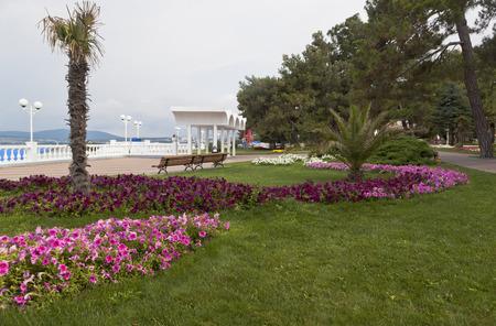 earlier: Earlier summer morning on the promenade of the resort Gelendzhik, Krasnodar egion, Russia Stock Photo